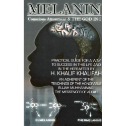 Melanin: Conscious Attunement & the God in I